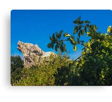 Grizzly Peak Canvas Print