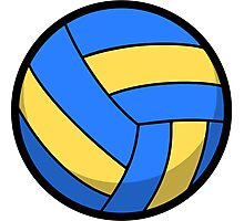 Cool and Cute Volleyball Photographic Print