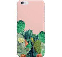 CACTI SUNSET iPhone Case/Skin