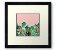 CACTI SUNSET Framed Print
