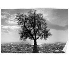 Tree, Office Art Poster