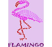 F for flamingo (9662 views) Photographic Print