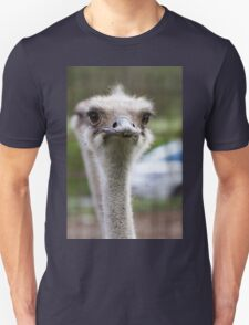 ostrich in the farm Unisex T-Shirt