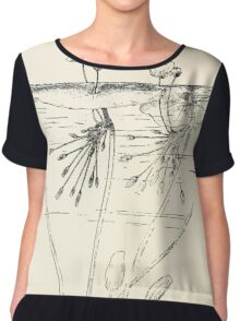 Southern wild flowers and trees together with shrubs vines Alice Lounsberry 1901 143 Floating Heart Chiffon Top