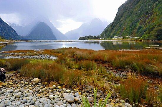 Milford Sound. South Island. New Zealand. (4) by Ralph de Zilva