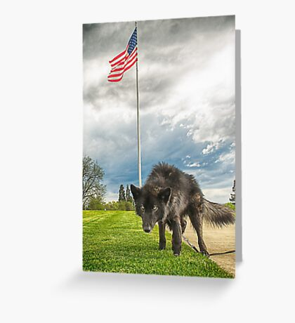 Patriotic Kochma II Greeting Card