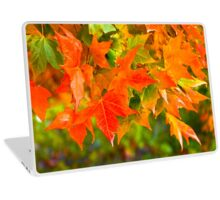 Maple Leaf Dance Laptop Skin