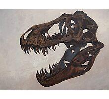 Tyrannosaurus skull Photographic Print