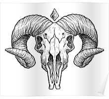 Illustrated Goat Skull - black Poster