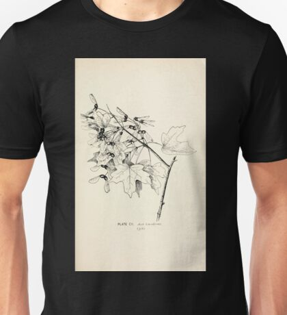 Southern wild flowers and trees together with shrubs vines Alice Lounsberry 1901 102 Acer Leucoderme Unisex T-Shirt