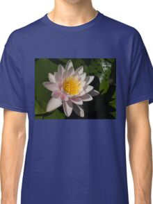 Crisp, Gently Pink Waterlily in the Hot Mediterranean Sun Classic T-Shirt