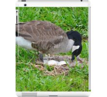Mother Goose With Eggs in Nest iPad Case/Skin