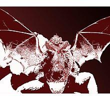 Dragon Dog Photographic Print