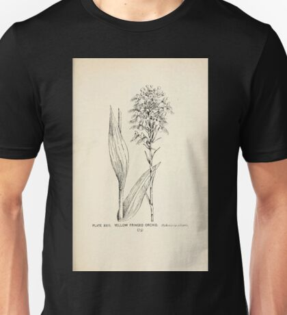 Southern wild flowers and trees together with shrubs vines Alice Lounsberry 1901 023 Yellow Fringed Orchid Unisex T-Shirt