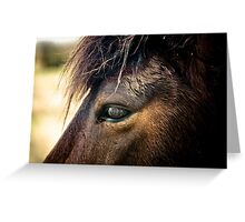 Spirit of The New Forest Greeting Card