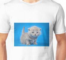 Fluffy charming cute kitty cat Unisex T-Shirt