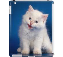 Fluffy charming cute kitty cat iPad Case/Skin