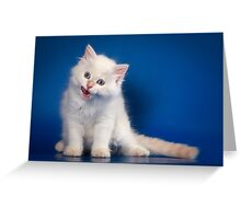 Fluffy charming cute kitty cat Greeting Card