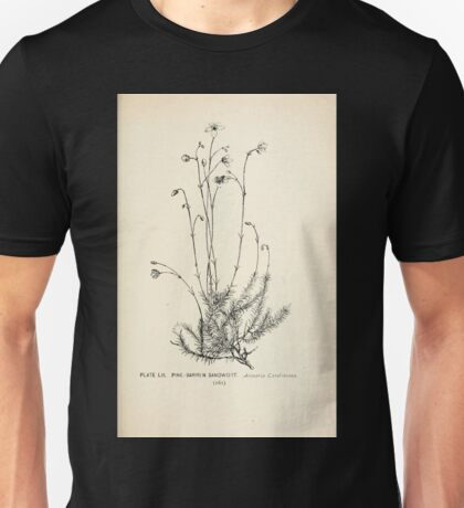 Southern wild flowers and trees together with shrubs vines Alice Lounsberry 1901 052 Pine Barren Sandwort Unisex T-Shirt