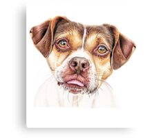 Lola - Rescue Pup Canvas Print