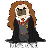Pugmionie Granger! Photographic Print