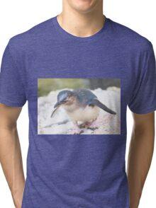 Curious Penguin Tri-blend T-Shirt