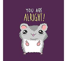 You Are Alright Motivational Hamster Photographic Print