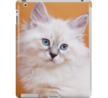Lovely fluffy kitten charming Siberian cat iPad Case/Skin