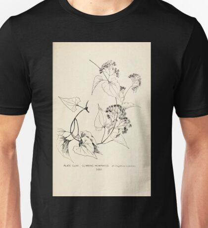 Southern wild flowers and trees together with shrubs vines Alice Lounsberry 1901 164 Climbing Hempweed Unisex T-Shirt