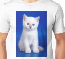 Lovely fluffy kitten charming British cat Unisex T-Shirt