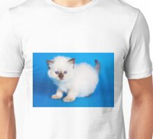 Lovely fluffy kitten charming British cat Unisex T-Shirt
