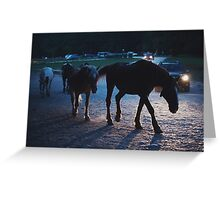 Light behind horses Greeting Card