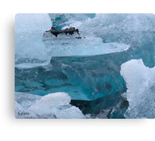 Ice in the sealagoon Canvas Print