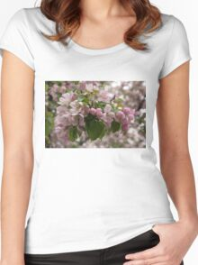 Blossoms and Buds - Springtime Apple Tree Women's Fitted Scoop T-Shirt