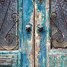 Portugal Doors 5 by Igor Shrayer