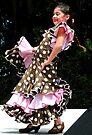 """""""Flamenco!"""" by waddleudo"""