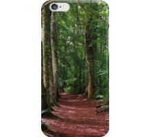 Morriston River Woodlands iPhone Case/Skin