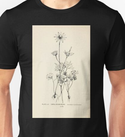 Southern wild flowers and trees together with shrubs vines Alice Lounsberry 1901 056 Carolina Anemone Unisex T-Shirt