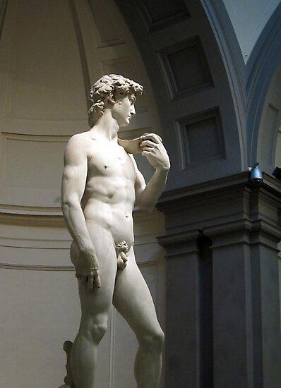 David by Michelangelo by David Carton