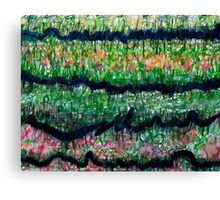 Humid Meadow with Wildflowers Canvas Print