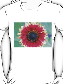 Beauty in the Details T-Shirt