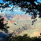 Mohave Point Grand Canyon by John Schneider