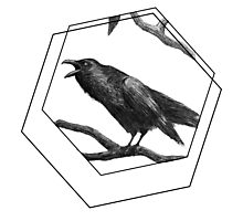 The Raven's Call Photographic Print