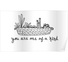 You Are One Of A Kind Poster