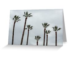 Exotic palms Greeting Card
