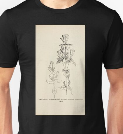 Southern wild flowers and trees together with shrubs vines Alice Lounsberry 1901 142 Five Flowered Gentian Unisex T-Shirt