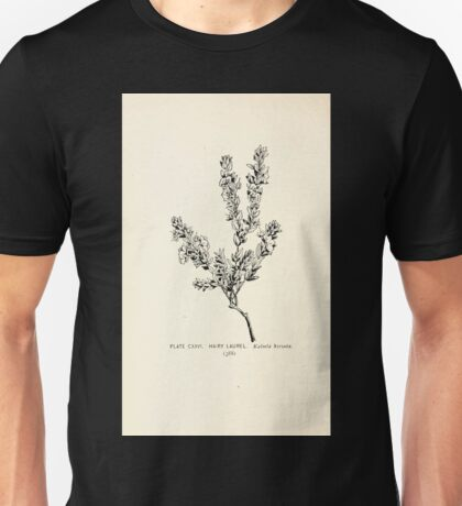 Southern wild flowers and trees together with shrubs vines Alice Lounsberry 1901 124 Hairy Laurel Unisex T-Shirt