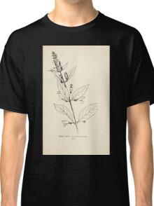 Southern wild flowers and trees together with shrubs vines Alice Lounsberry 1901 148 Scutellaria Montana Classic T-Shirt