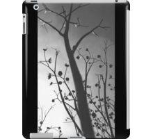 Pixies Twilight Whimsy iPad Case/Skin