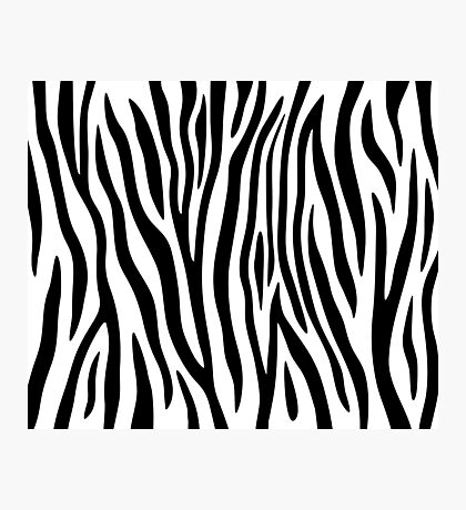 Zebra stripes black and white abstract background. Photographic Print